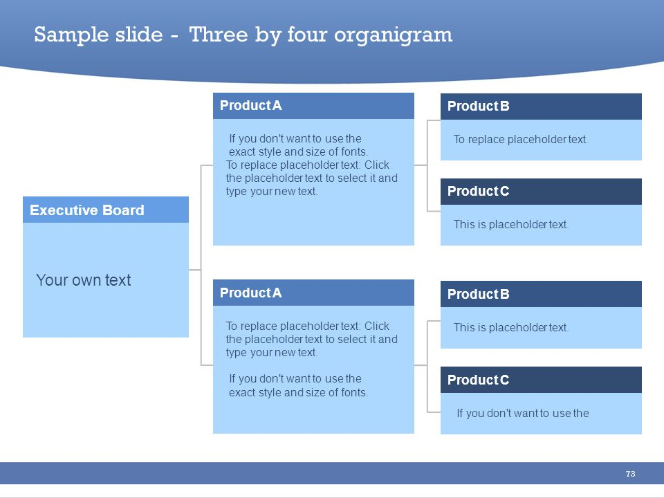 Sample slide - Three by four organigram