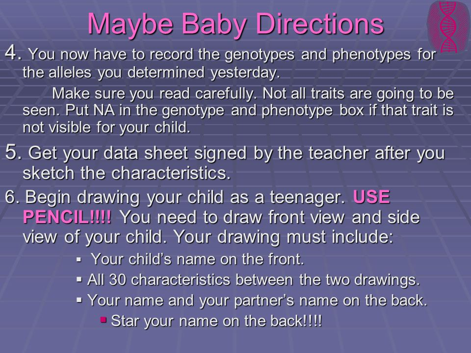 Maybe Baby Directions 4. You now have to record the genotypes and phenotypes for the alleles you determined yesterday.
