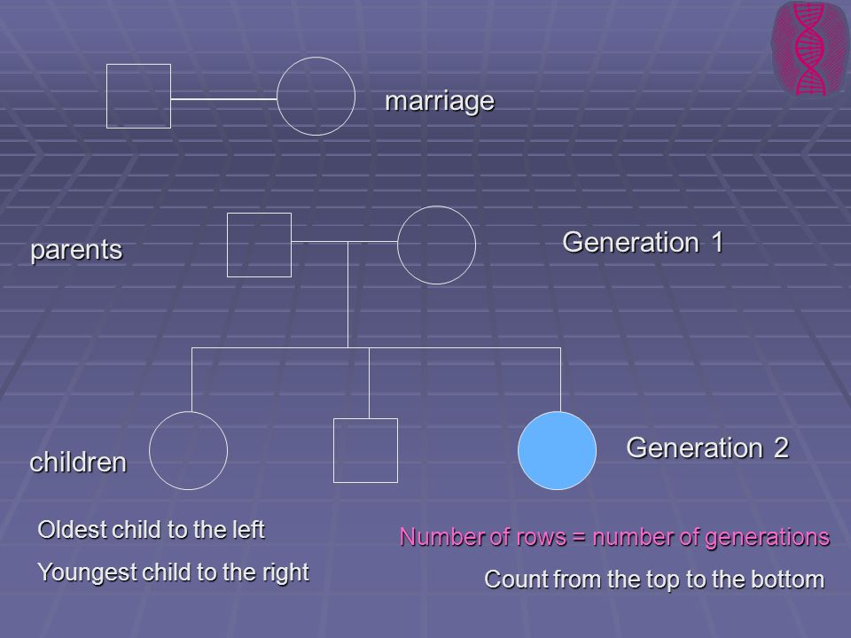 marriage Generation 1 parents Generation 2 children
