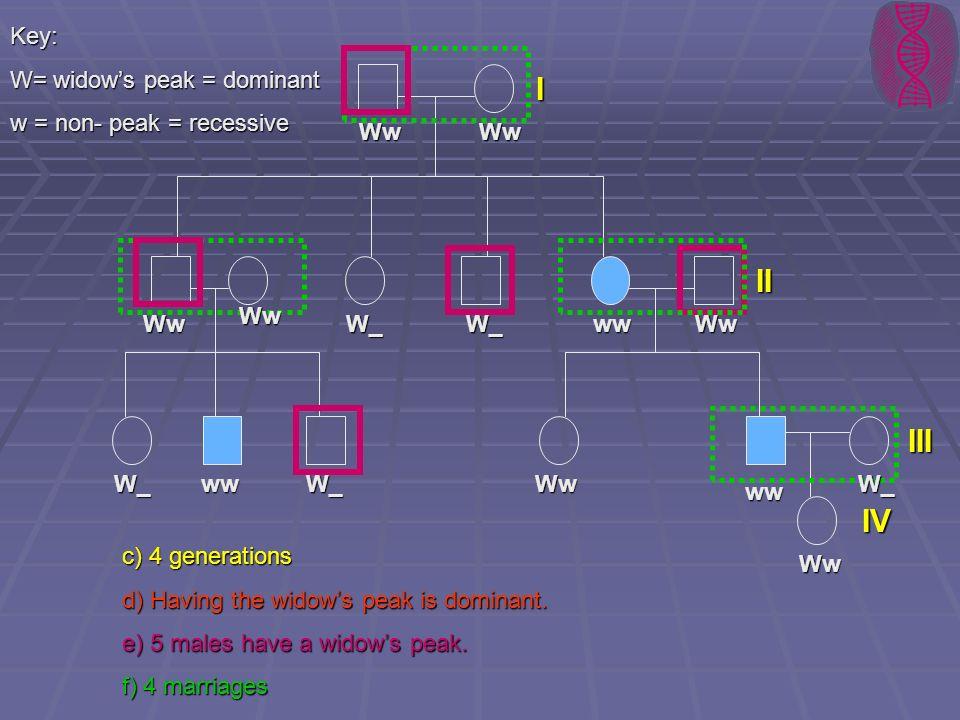 I II III IV Key: W= widow's peak = dominant w = non- peak = recessive