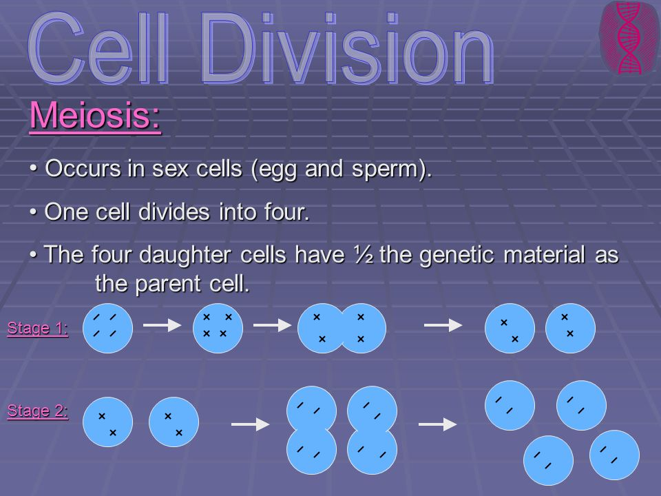 Cell Division Meiosis: Occurs in sex cells (egg and sperm).