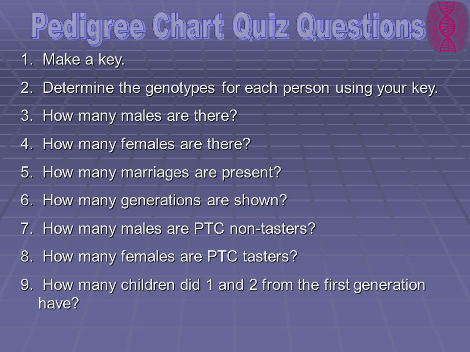 Pedigree Chart Quiz Questions