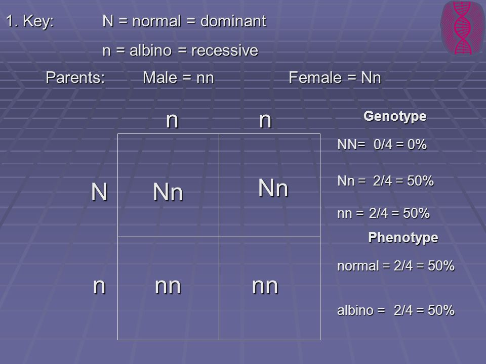 n n Nn N Nn n nn nn 1. Key: N = normal = dominant