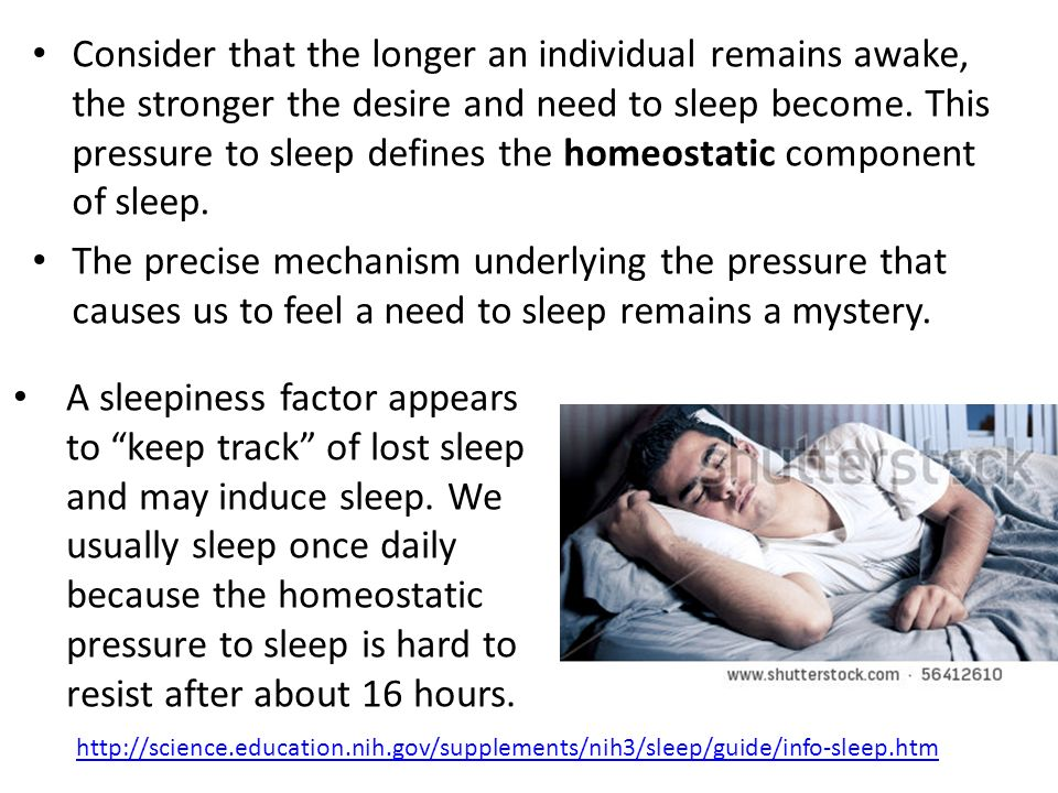Consider that the longer an individual remains awake, the stronger the desire and need to sleep become. This pressure to sleep defines the homeostatic component of sleep.
