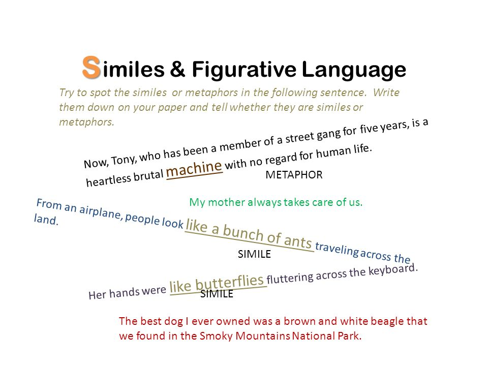 essay on figurative language Get your free poems using figurative language, complete with review questions aligned to common core, formatted for printing and ready to edit you'll love it.