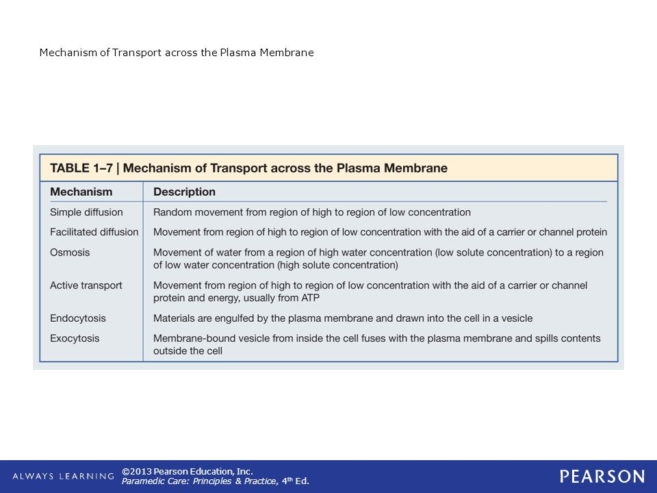 Mechanism of Transport across the Plasma Membrane