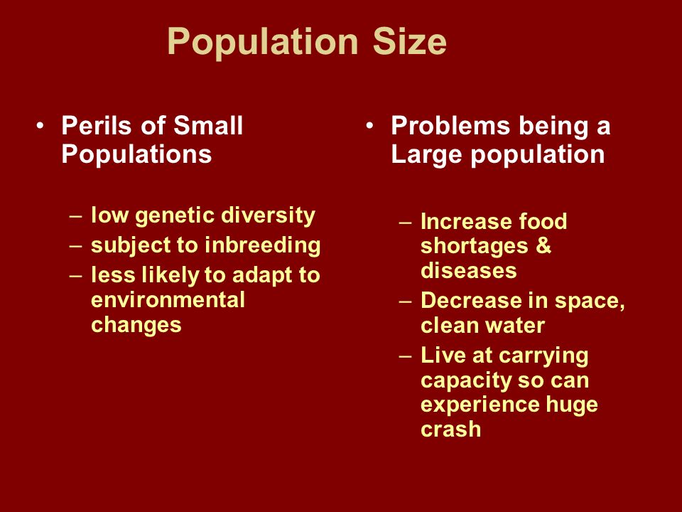 Population Size Perils of Small Populations