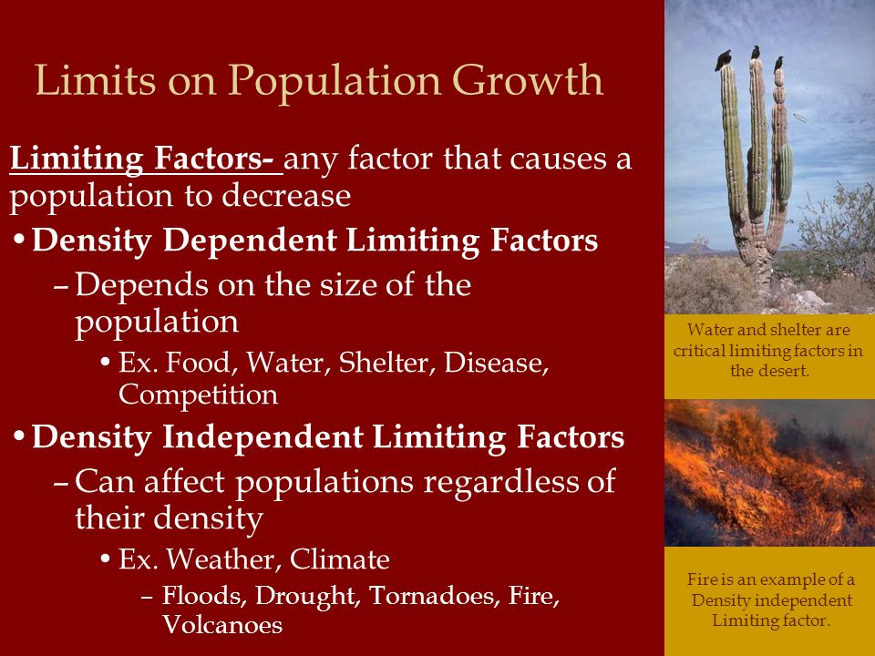 Limits on Population Growth