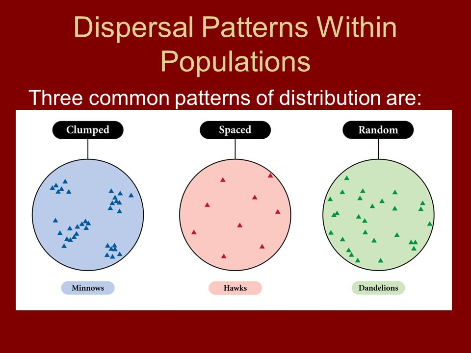 Dispersal Patterns Within Populations