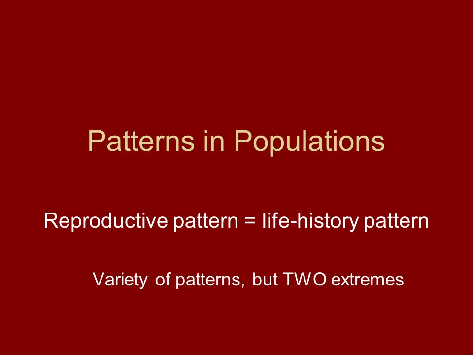Patterns in Populations