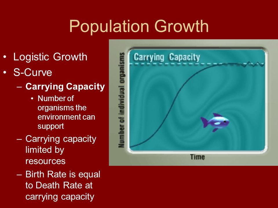 Population Growth Logistic Growth S-Curve Carrying Capacity