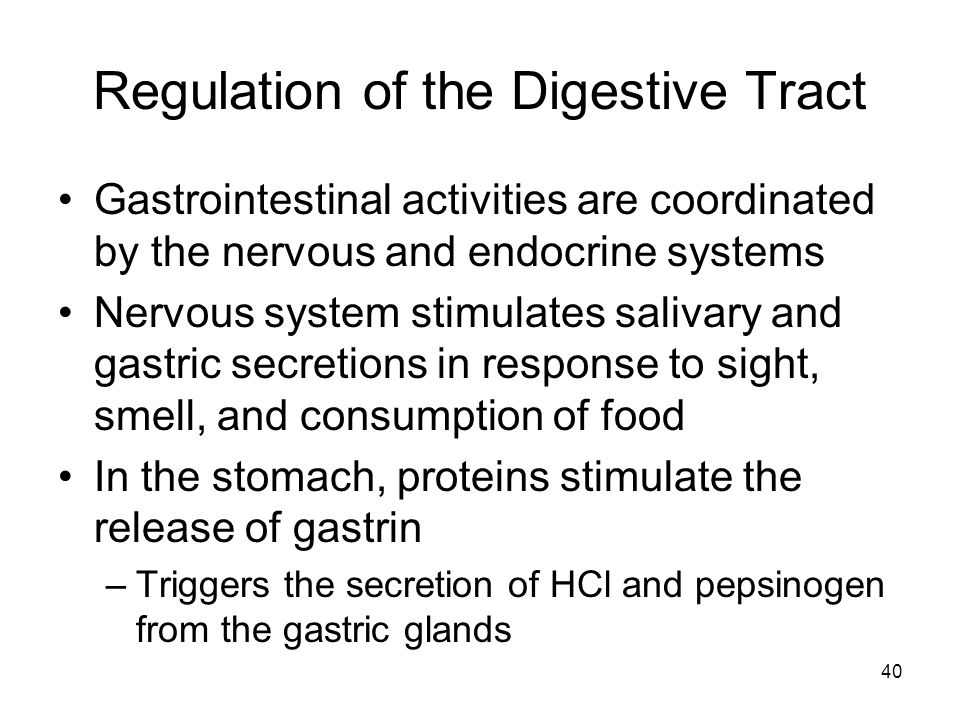 Regulation of the Digestive Tract