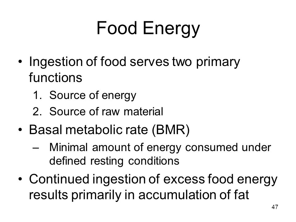 Food Energy Ingestion of food serves two primary functions