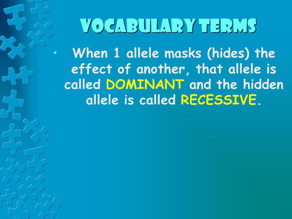 vocabulary terms When 1 allele masks (hides) the effect of another, that allele is called DOMINANT and the hidden allele is called RECESSIVE.