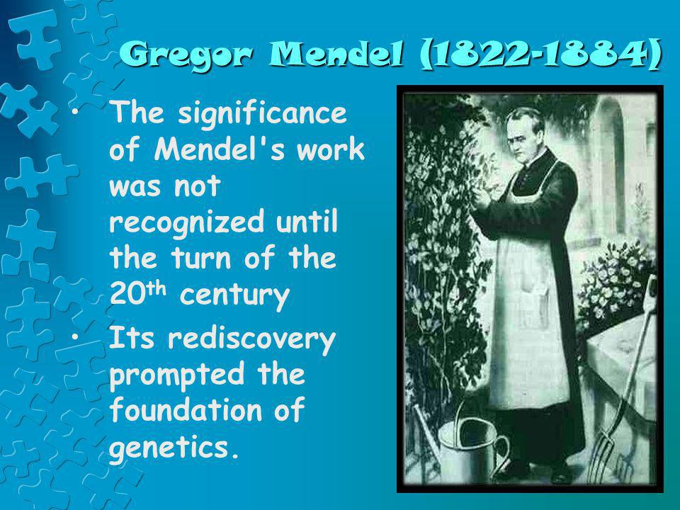Gregor Mendel (1822-1884) The significance of Mendel s work was not recognized until the turn of the 20th century.