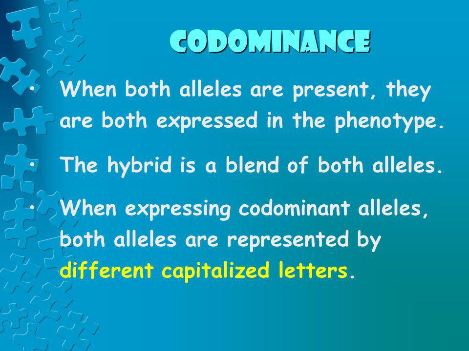 codominance When both alleles are present, they are both expressed in the phenotype. The hybrid is a blend of both alleles.