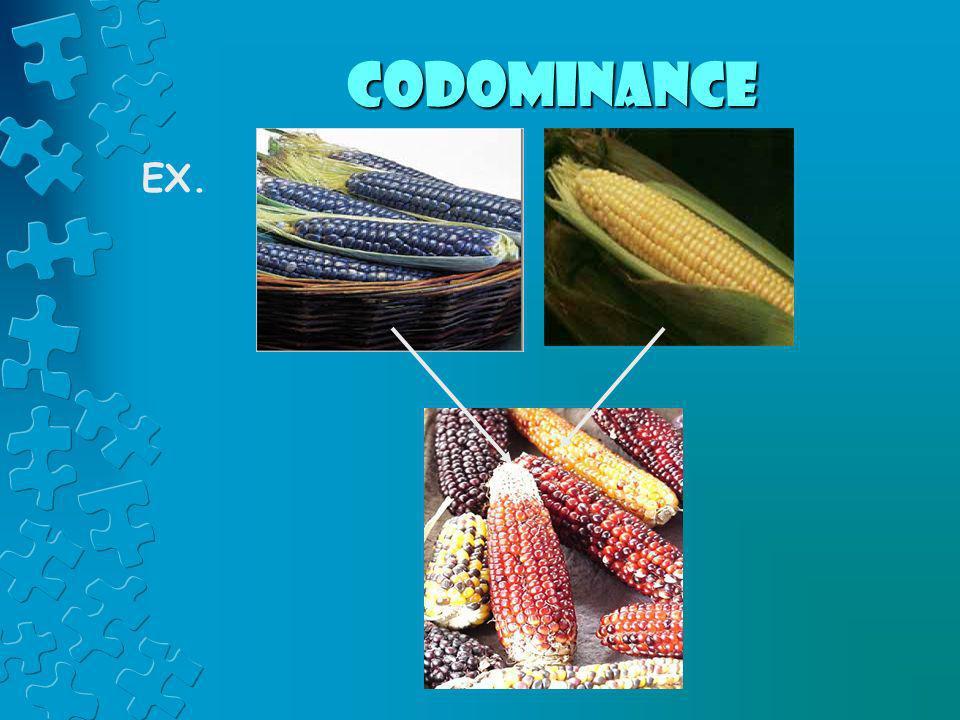 Codominance EX.