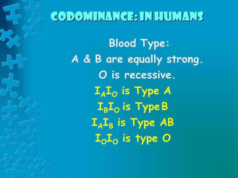 Codominance: in humans