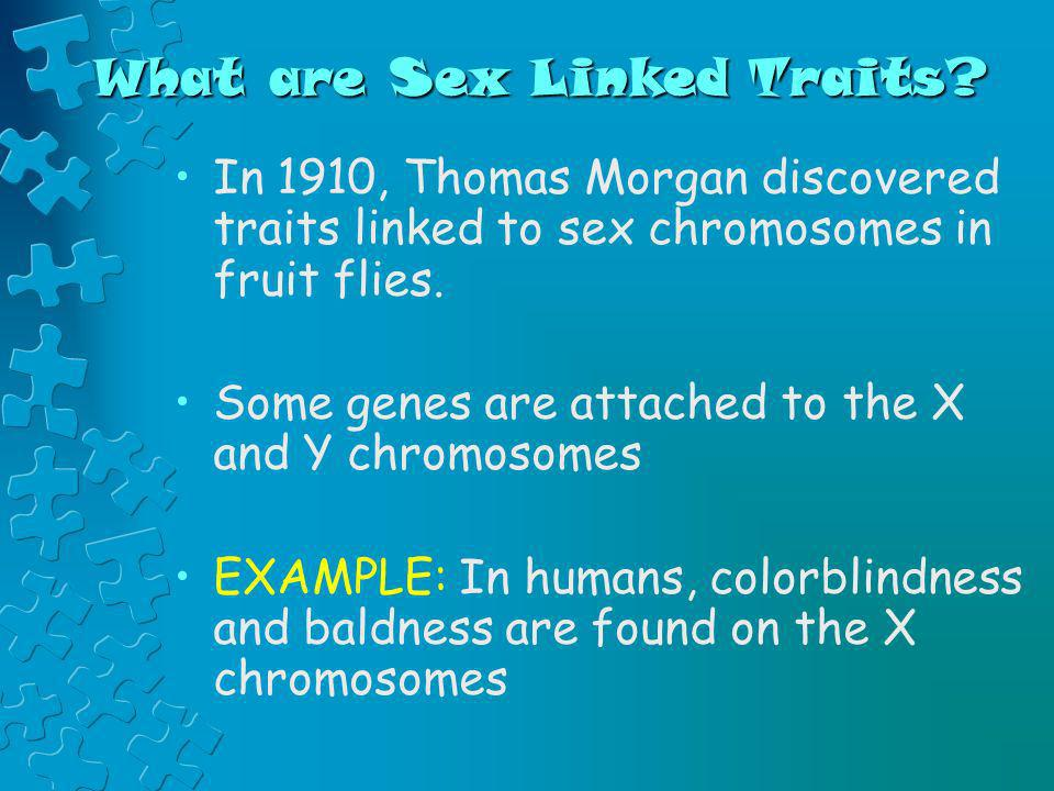 What are Sex Linked Traits