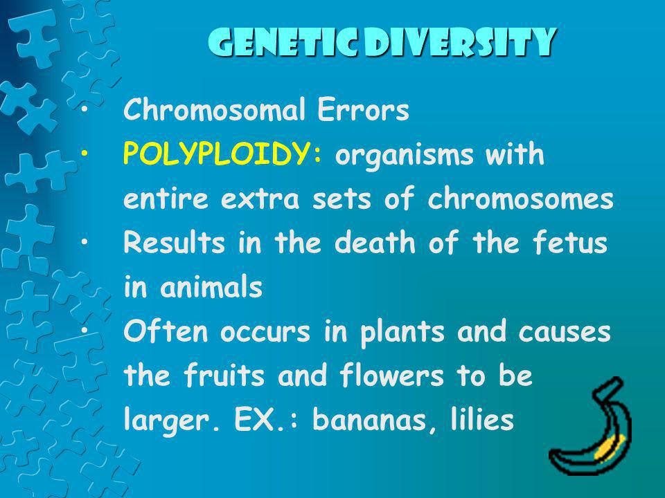Genetic Diversity Chromosomal Errors