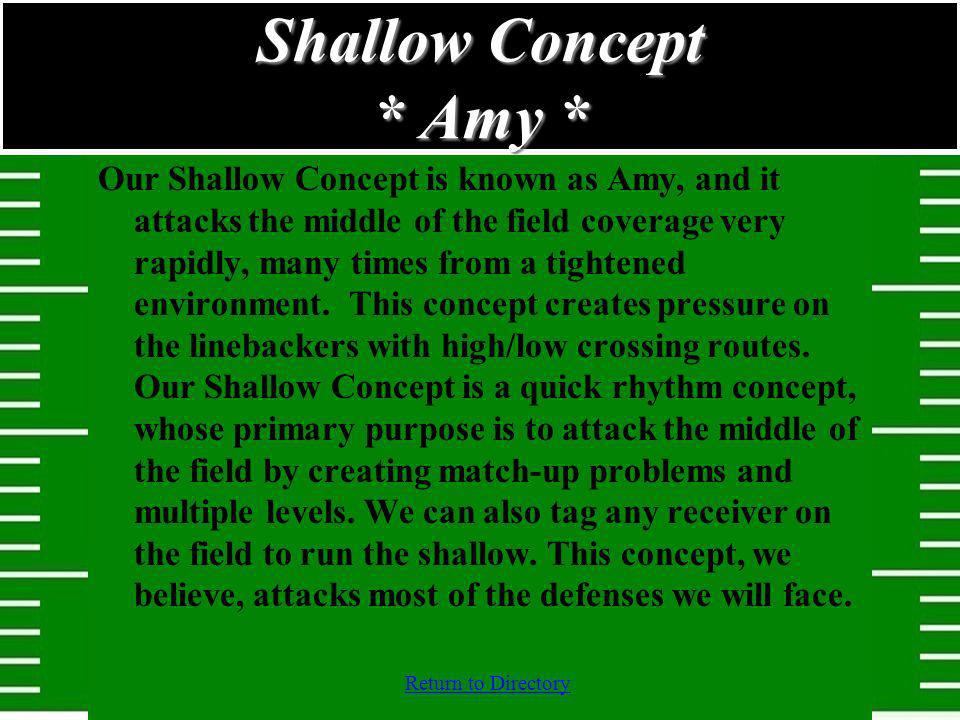 Shallow Concept * Amy *