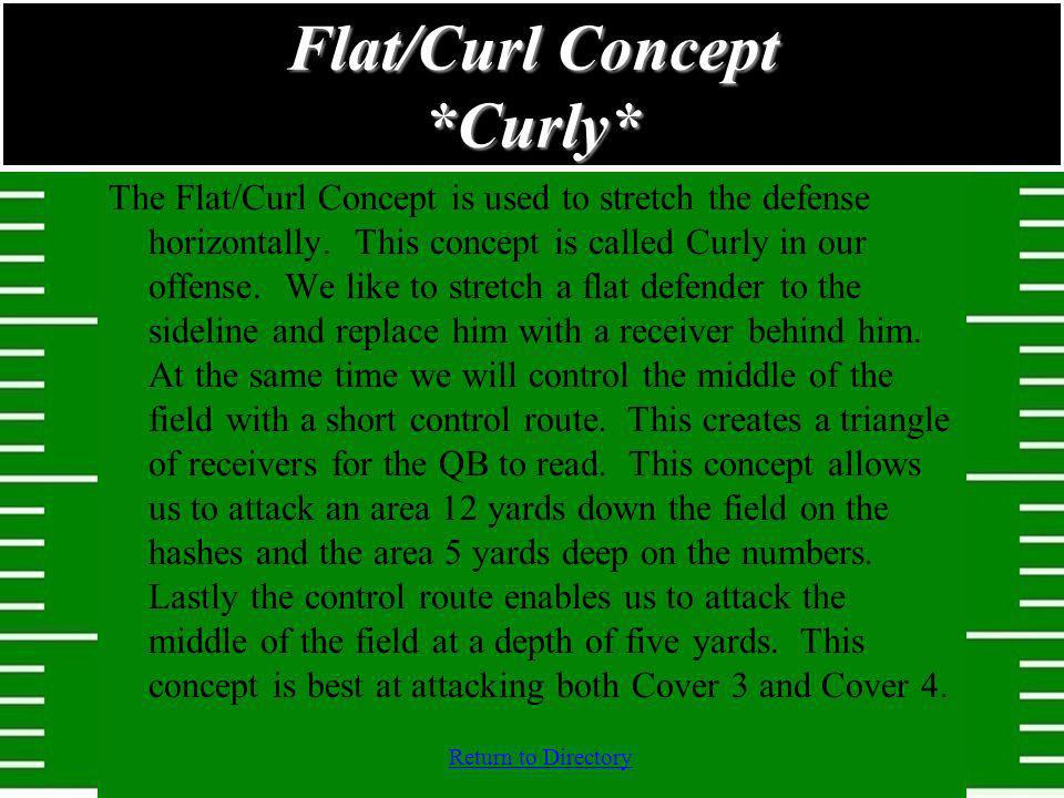 Flat/Curl Concept *Curly*