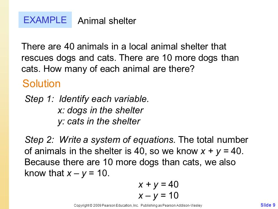 Solution EXAMPLE Animal shelter