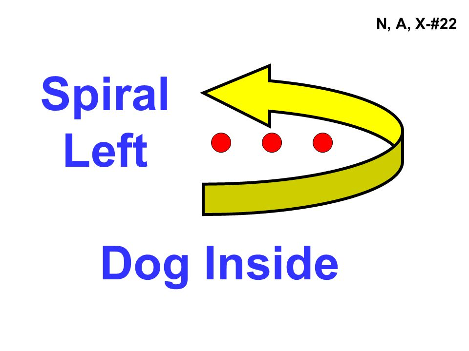 N, A, X-#22 Spiral Left Dog Inside