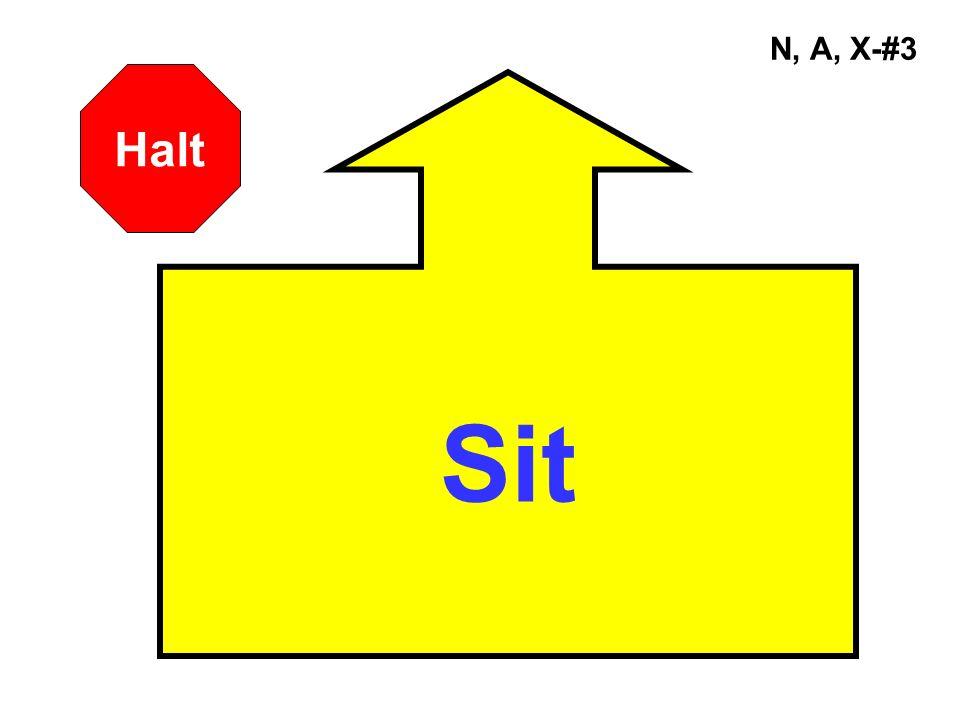 N, A, X-#3 Sit Halt
