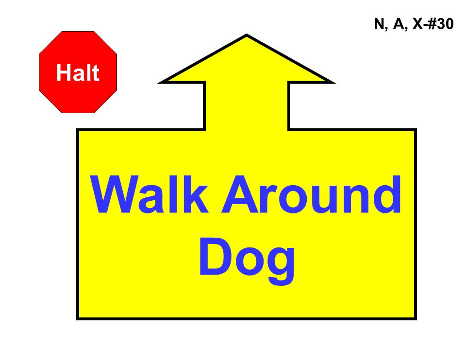 N, A, X-#30 Halt Walk Around Dog