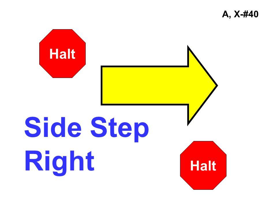 A, X-#40 Halt Side Step Right Halt