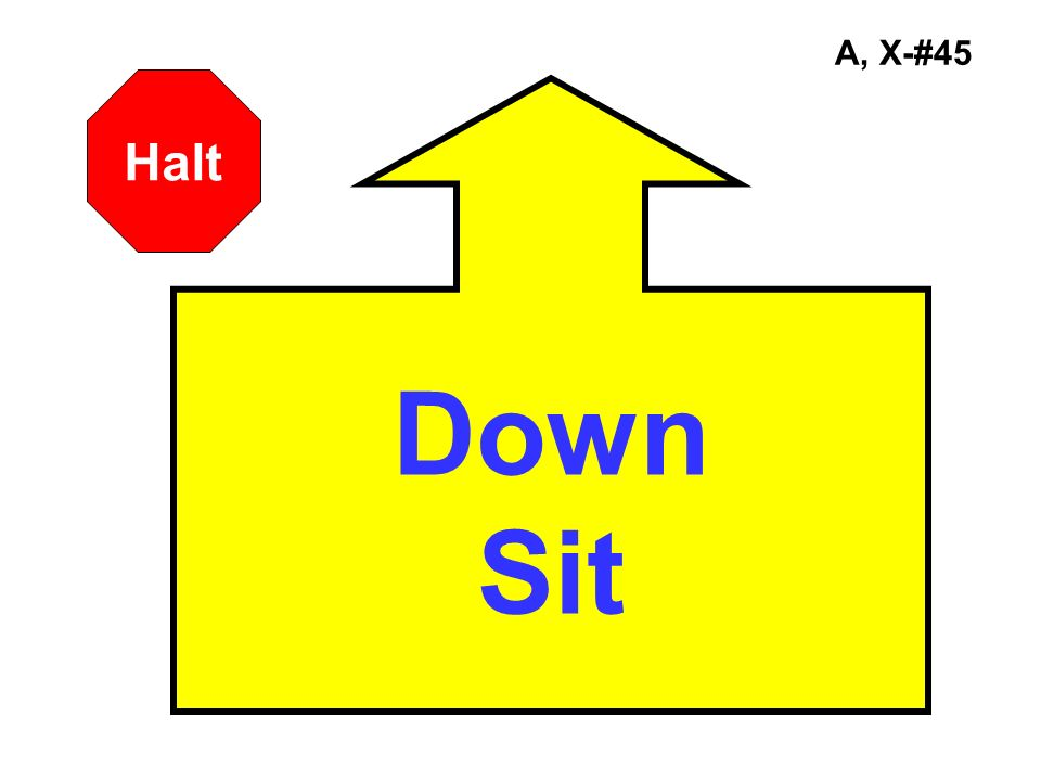 A, X-#45 Halt Down Sit