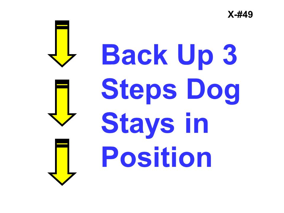 X-#49 Back Up 3 Steps Dog Stays in Position
