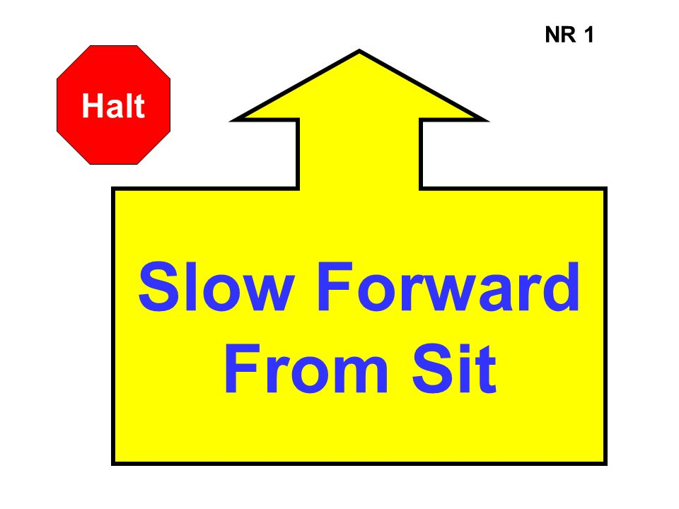 NR 1 Halt Slow Forward From Sit