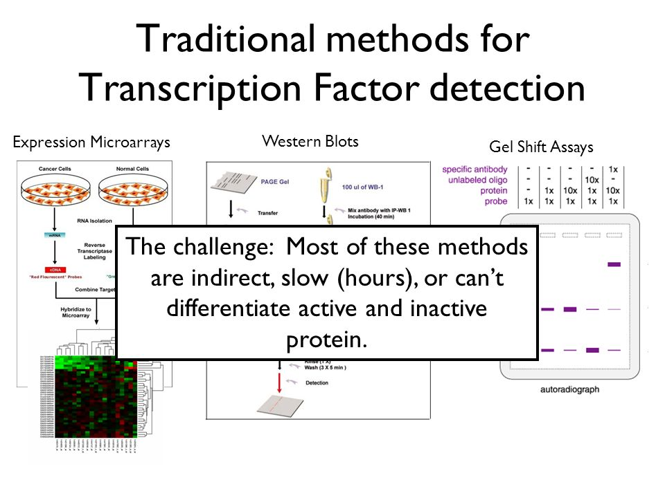 Traditional methods for Transcription Factor detection