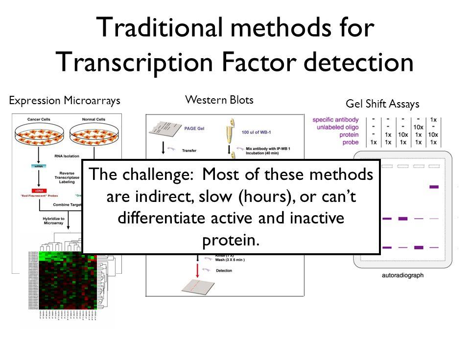 Traditional methods for Transcription Factor detection