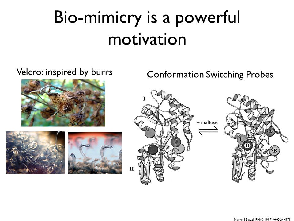 Bio-mimicry is a powerful motivation