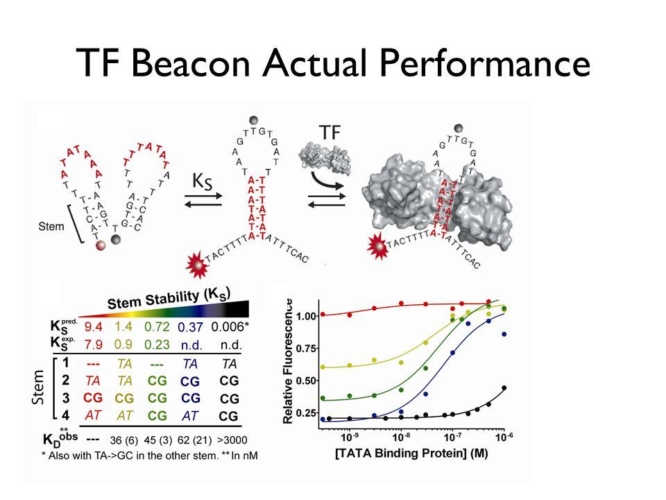 TF Beacon Actual Performance