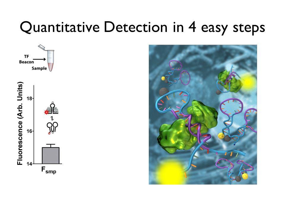 Quantitative Detection in 4 easy steps