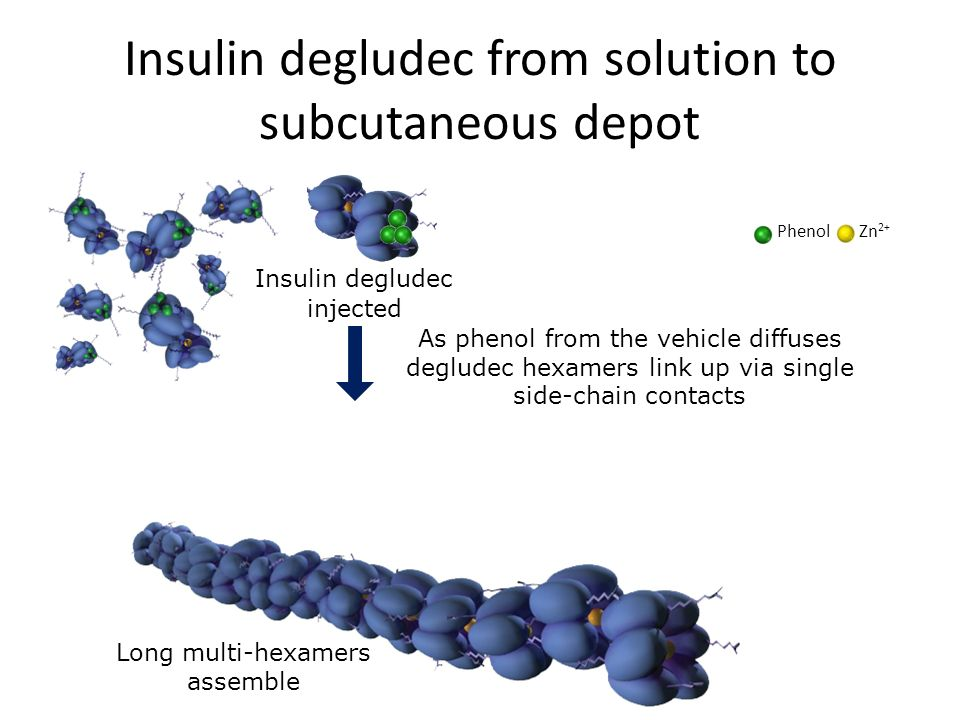 Insulin degludec from solution to subcutaneous depot