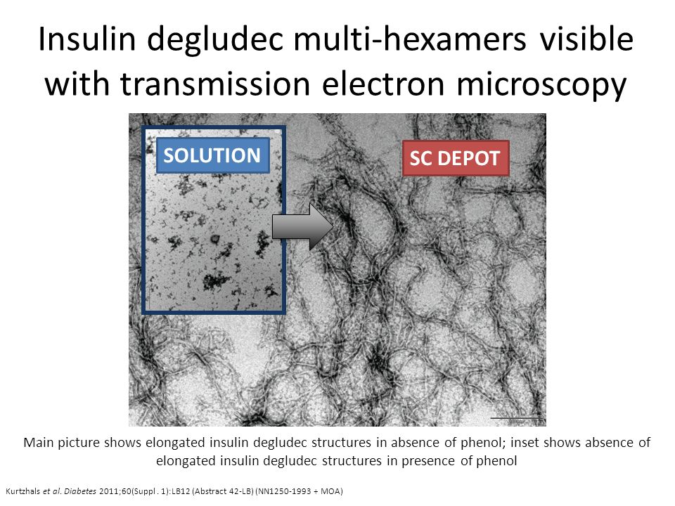 Insulin degludec multi-hexamers visible with transmission electron microscopy