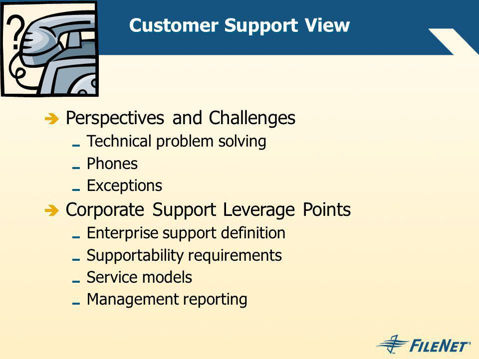 Customer Support View Perspectives and Challenges