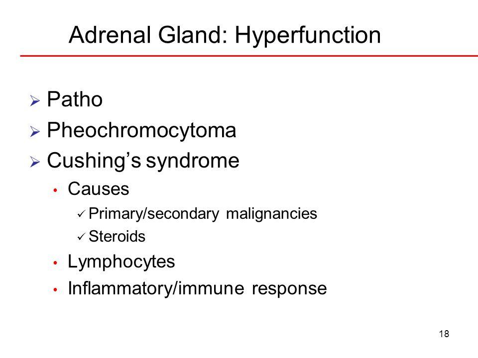 Adrenal Gland: Hyperfunction