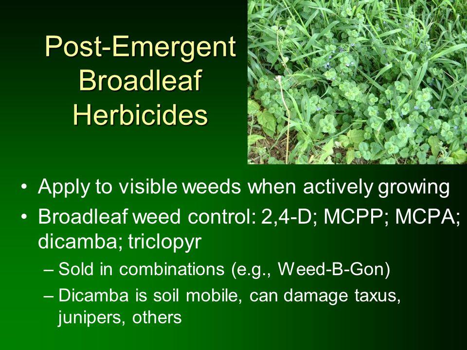 Post-Emergent Broadleaf Herbicides
