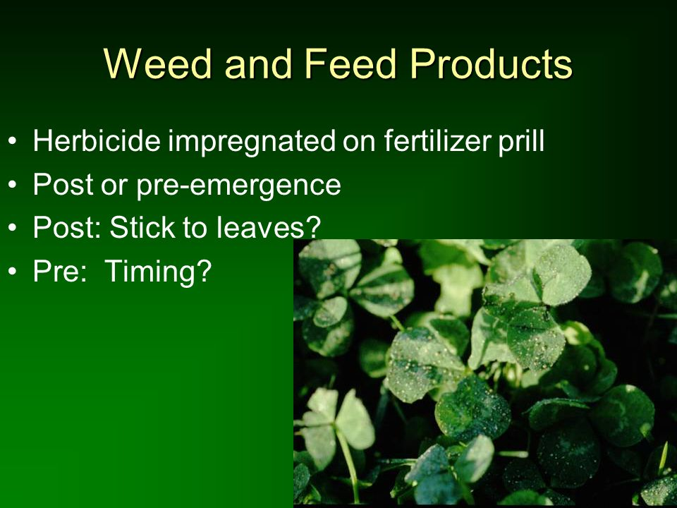 Weed and Feed Products Herbicide impregnated on fertilizer prill