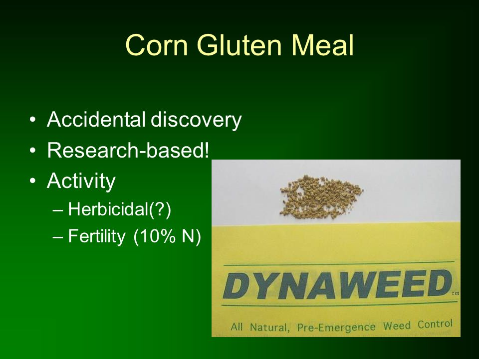 Corn Gluten Meal Accidental discovery Research-based! Activity