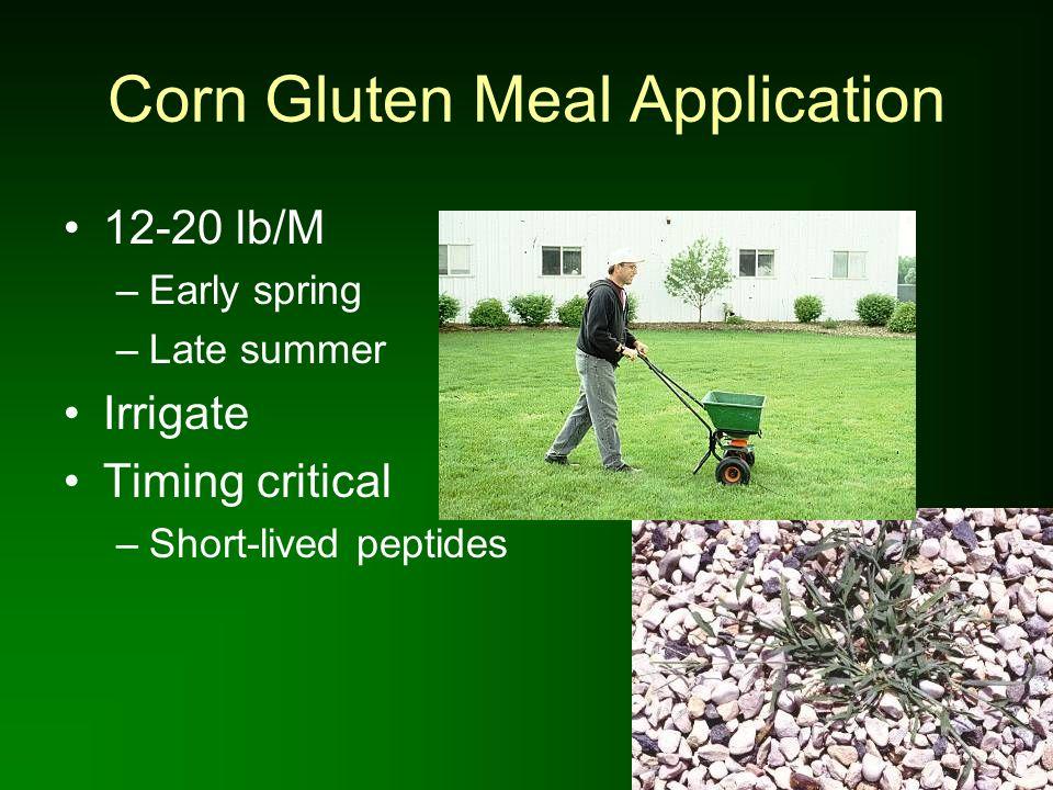 Corn Gluten Meal Application