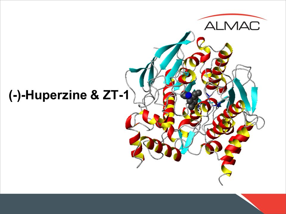 (-)-Huperzine & ZT-1