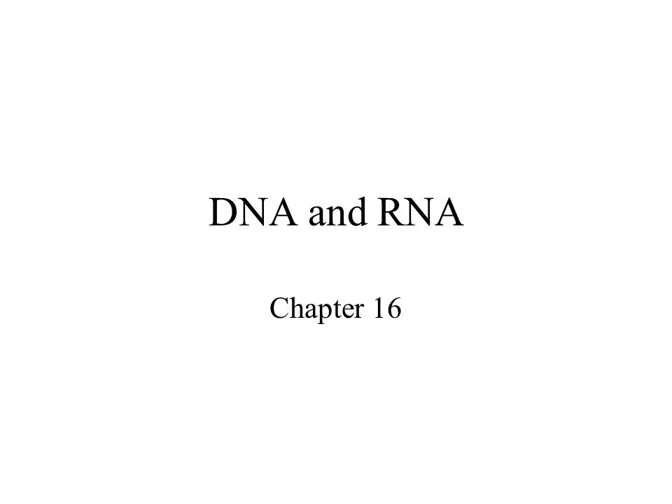 DNA and RNA Chapter 16