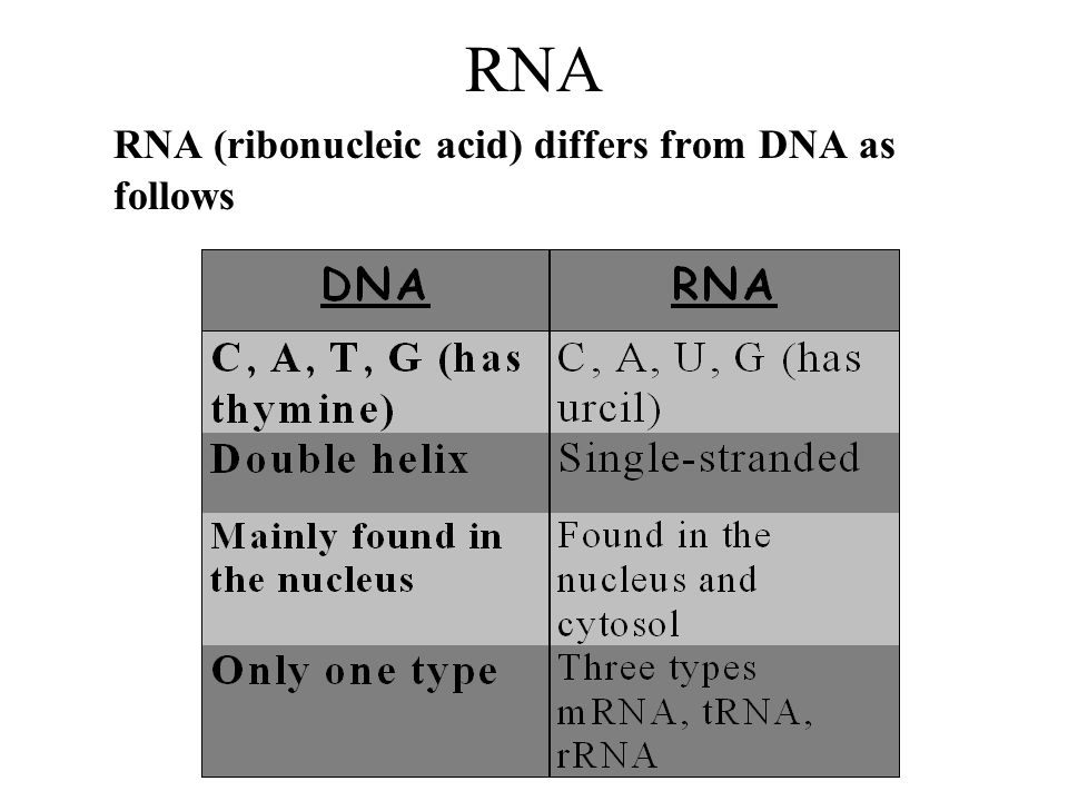 RNA RNA (ribonucleic acid) differs from DNA as follows
